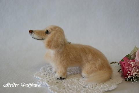 羊毛フェルト犬_ずっこちゃん3