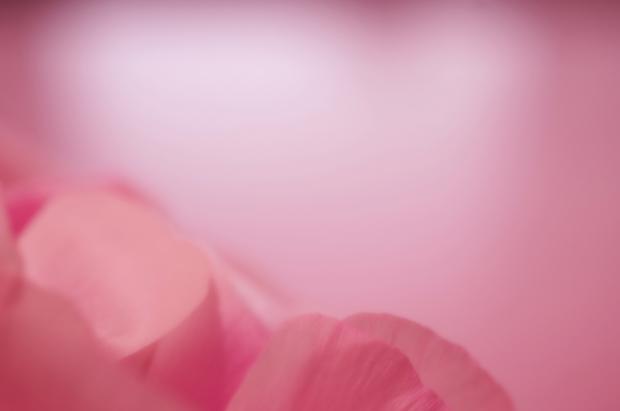 ピンクはじぇんじぇん似合いませんよ。
