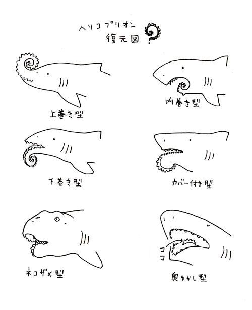 ヘリコ復元図