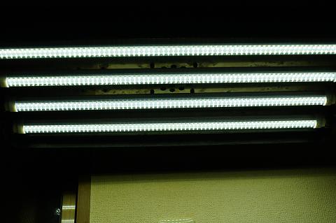 蛍光灯型LED