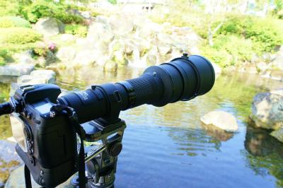 600mm.jpg