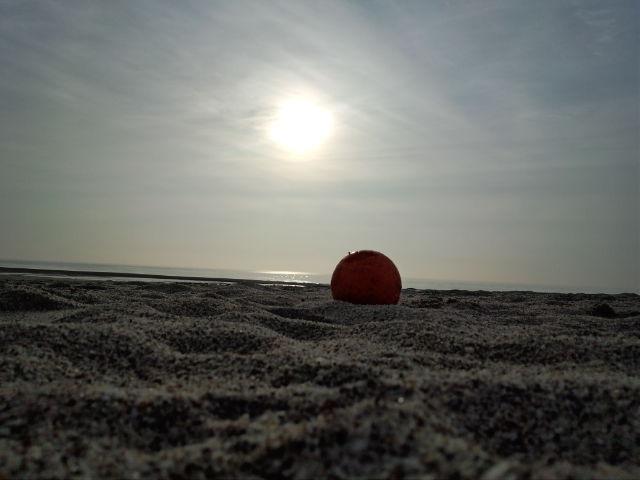 海とボール