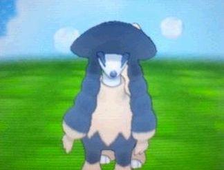 pokemonXYtorimi007.jpg