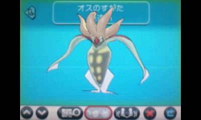 pokemonxym01.jpg