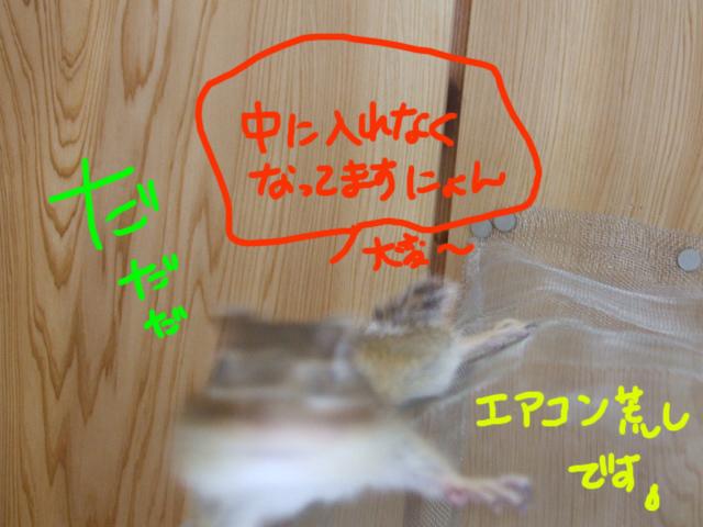 DSCF120615b1273.jpg