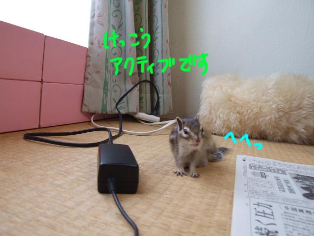DSCF120730a1943.jpg