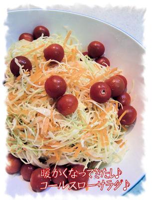 サラダ若干少なめに作っています。翌日のお昼は息子がいませんから