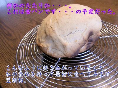 ホームベーカリー任せのいつもの食パンです。