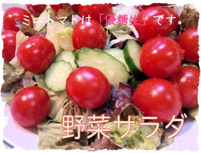 野菜。少しでも作ります。