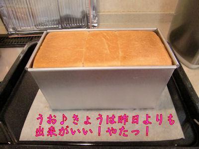 焼けたパン