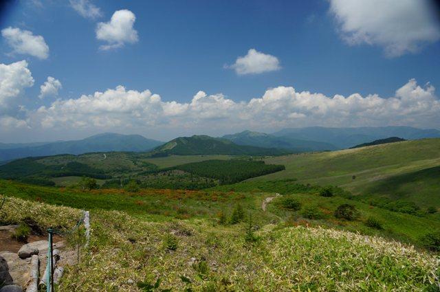 6月下旬の車山高原
