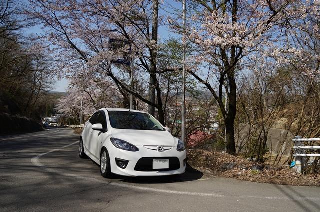 マツダスピードデミオと旧中山道・望月の桜