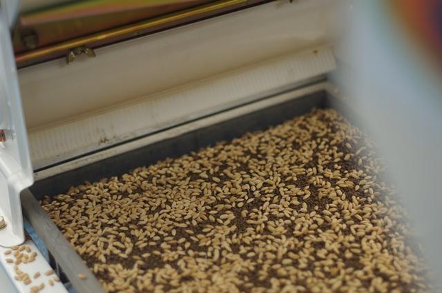 播種機の播種部分(米をまくところ)