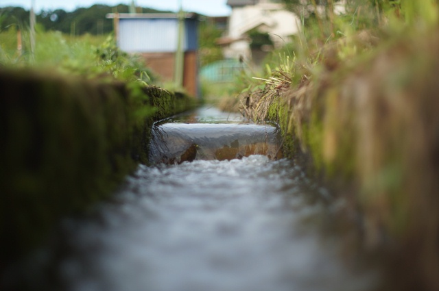 東京サマーランドあたりから取水した秋川の清流を使った用水