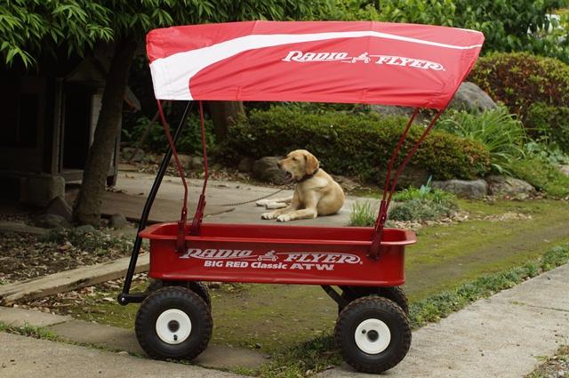 ラジオフライヤー#1800ワゴンに幌・#WC30 ワゴン用キャノピーをつけたとこと番犬
