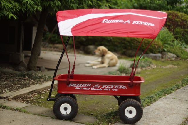 ラジオフライヤー#1800ワゴンに幌・#WC30 ワゴン用キャノピーをつけたとこと番犬 3