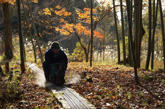 紅葉と竹林の中で、ミニSL