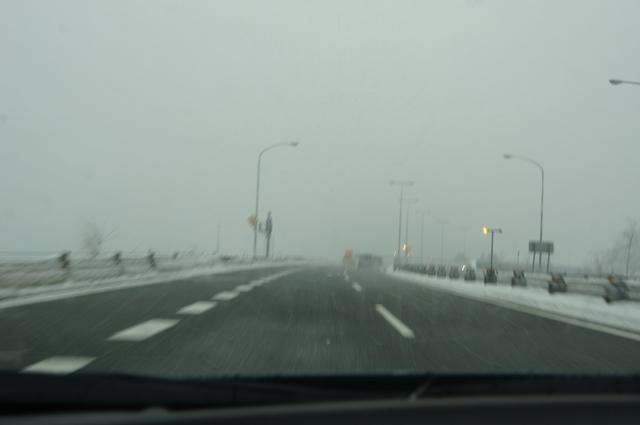 湯沢でようやくしっかりと雪を