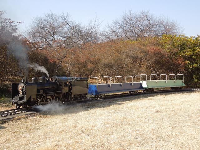 青空の下 C56 129 14年 新春 小川精機 OSLSC関東運転会 今年の飯山線にSLを!に使う予定の客車を従えて