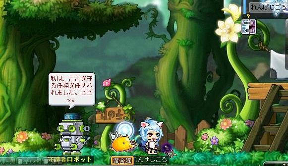 Maple121228_221037.jpg
