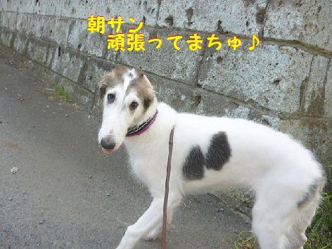 a_20120810073226.jpg