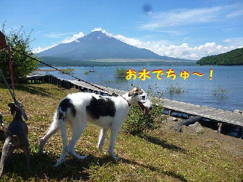 a_20120828071457.jpg