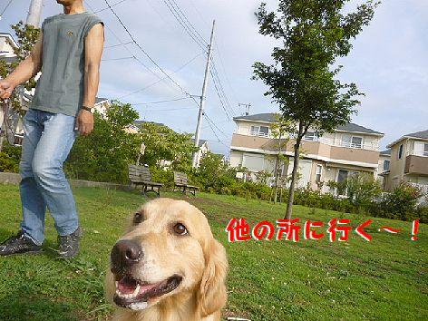 b1_20120811090123.jpg
