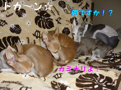 b_20120511071513.jpg