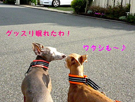 b_20120525070927.jpg