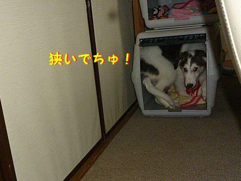 b_20120618071728.jpg