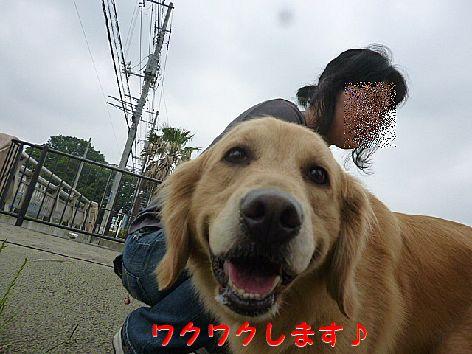 b_20120620071028.jpg
