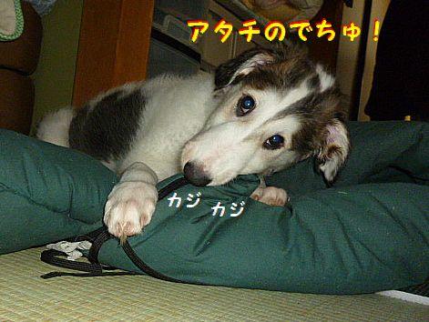 b_20120624124358.jpg