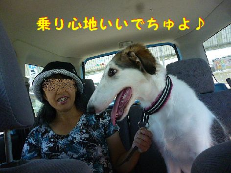 b_20120820073901.jpg