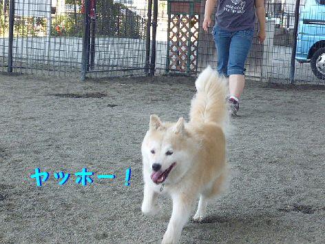b_20120831072614.jpg