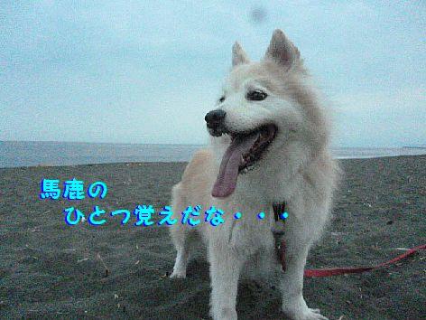 c_20120701093706.jpg
