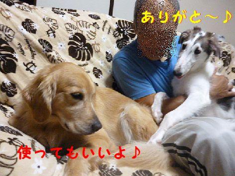 c_20120816074349.jpg