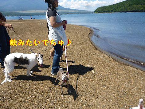 c_20120828071457.jpg