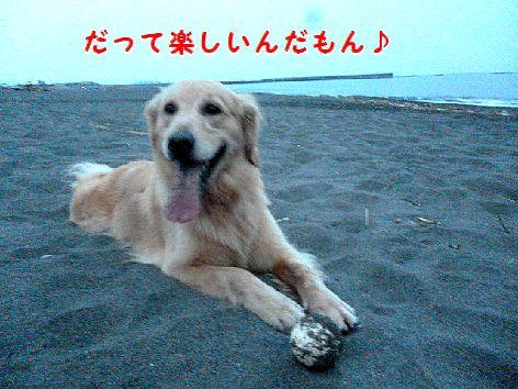 d_20120701093706.jpg