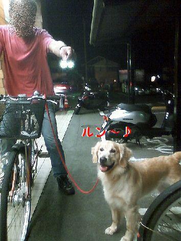 d_20120816074348.jpg
