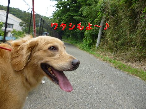 e_20120706073639.jpg