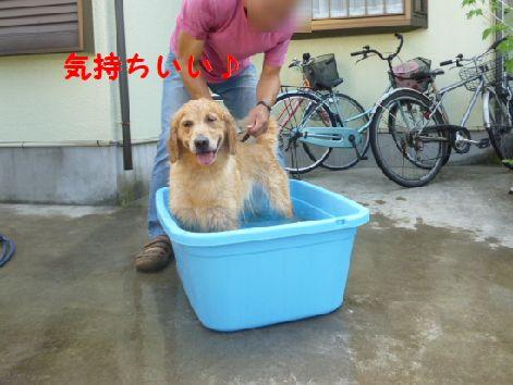 e_20120730072742.jpg