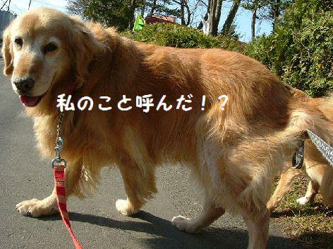 e_20120814072339.jpg