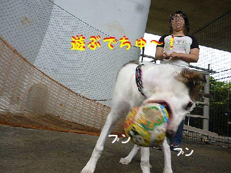 e_20120815073012.jpg