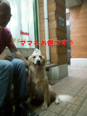 e_20120816074348.jpg