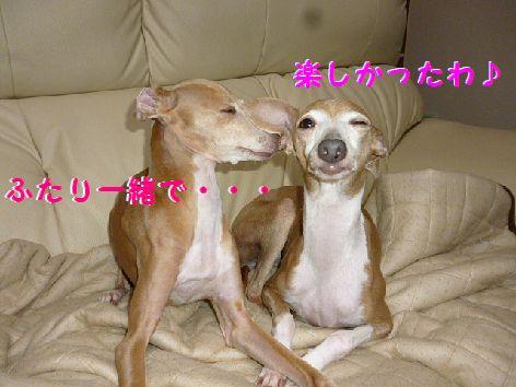 f_20120527090747.jpg