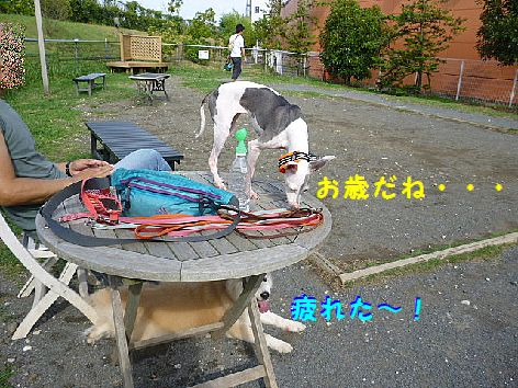 f_20120716115610.jpg