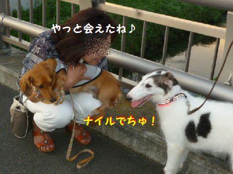 f_20120718073041.jpg