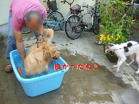 f_20120730072741.jpg