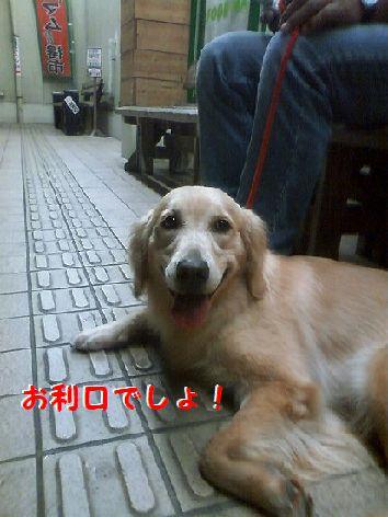 f_20120816074348.jpg