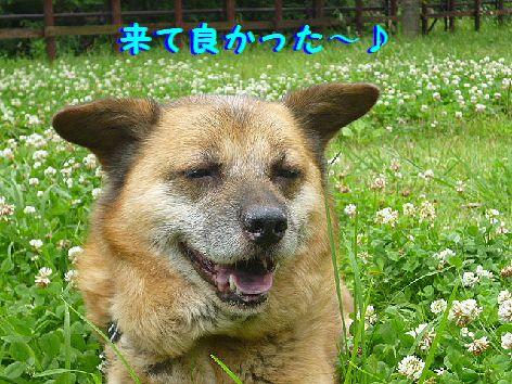 g_20120630081243.jpg
